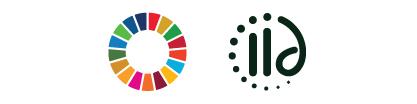 SDG-IID-logo
